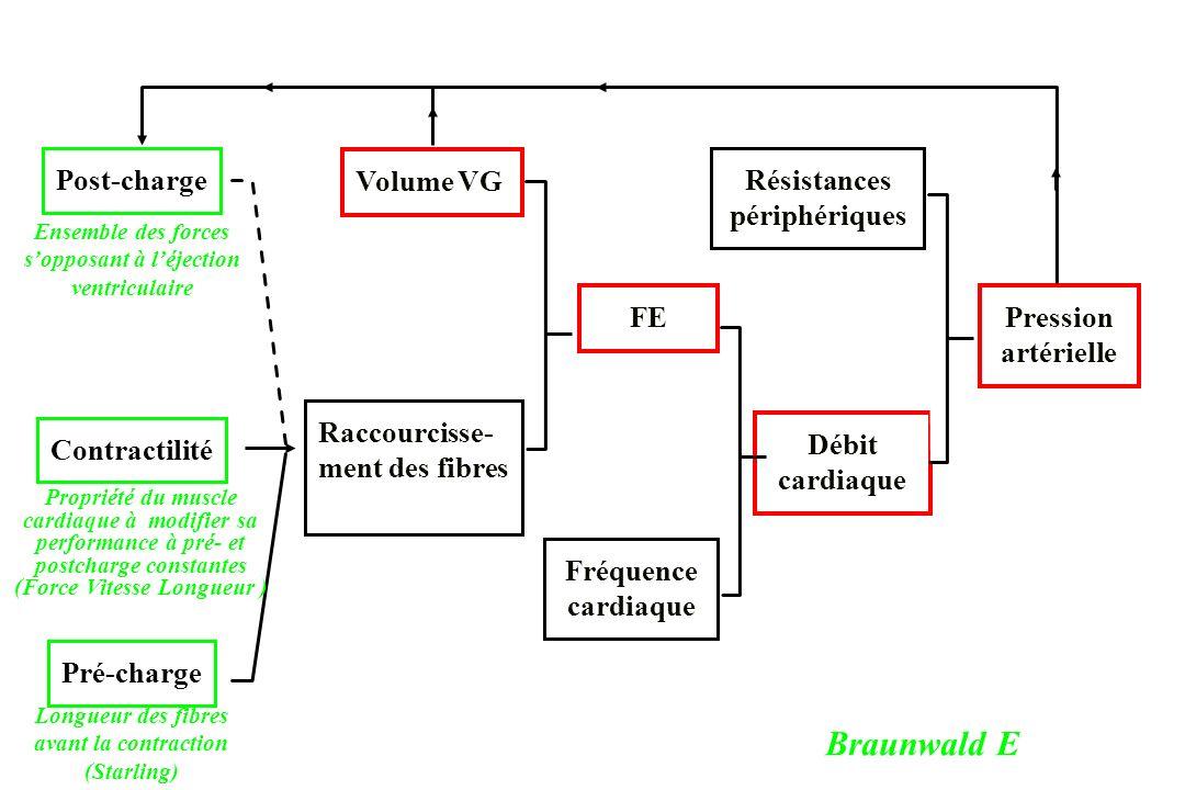 Braunwald E Post-charge Volume VG Résistances périphériques FE