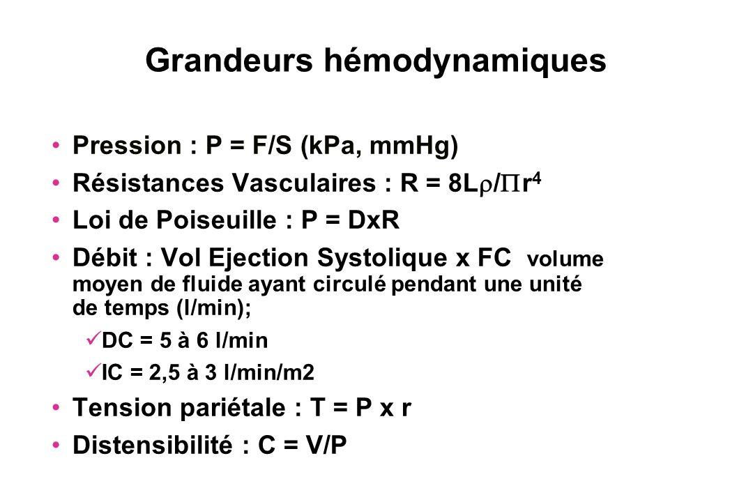 Grandeurs hémodynamiques