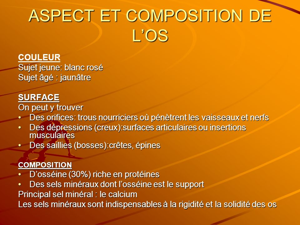 ASPECT ET COMPOSITION DE L'OS