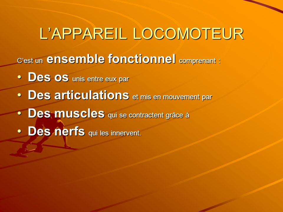 L'APPAREIL LOCOMOTEUR