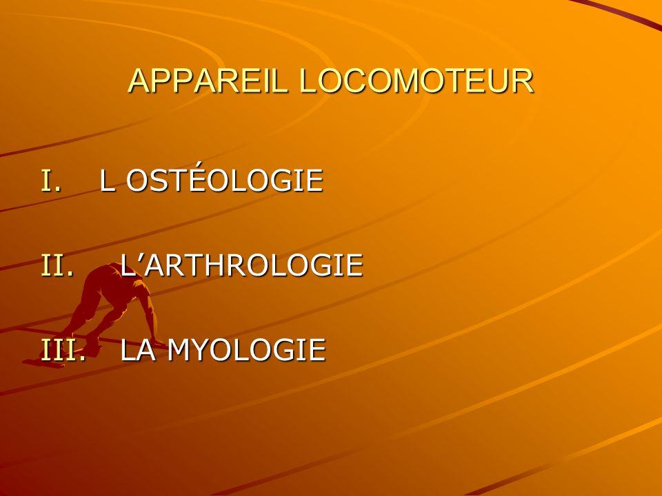 APPAREIL LOCOMOTEUR L OSTÉOLOGIE L'ARTHROLOGIE LA MYOLOGIE