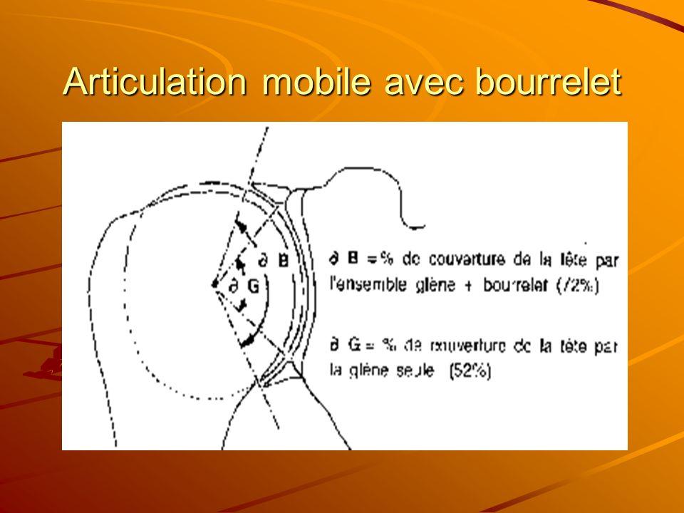 Articulation mobile avec bourrelet
