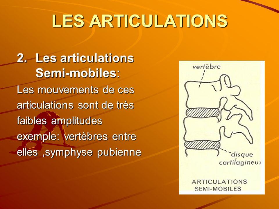 LES ARTICULATIONS Les articulations Semi-mobiles: