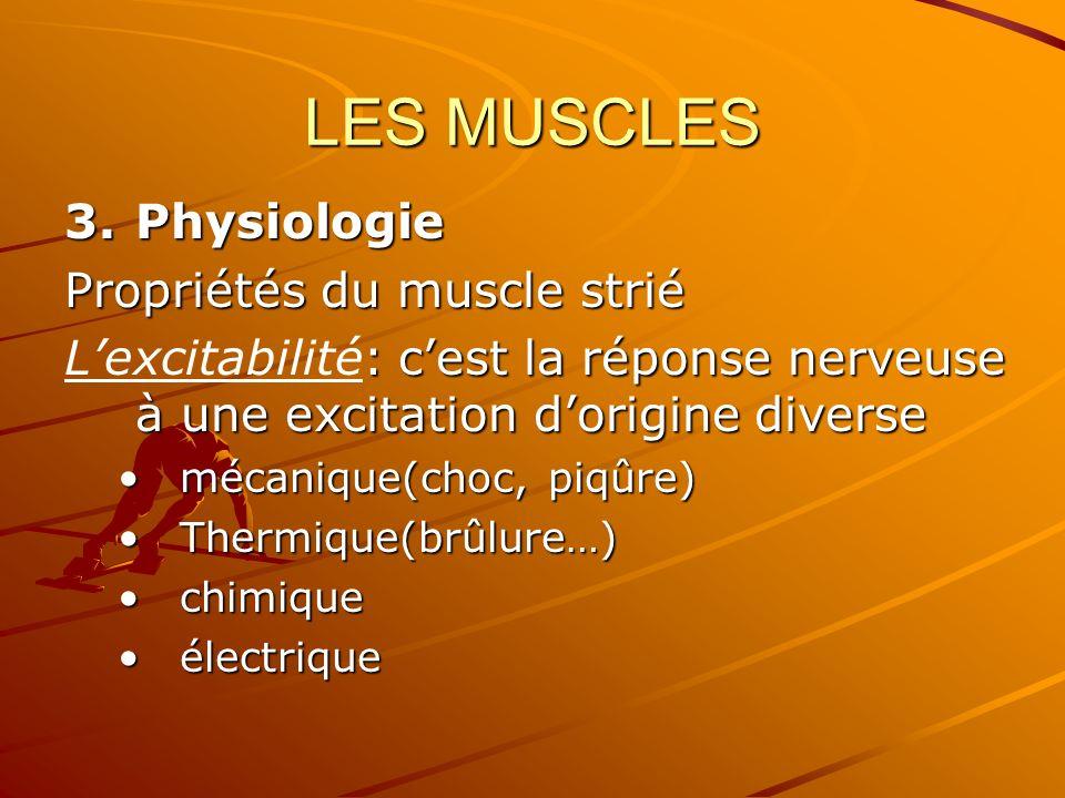 LES MUSCLES Physiologie Propriétés du muscle strié