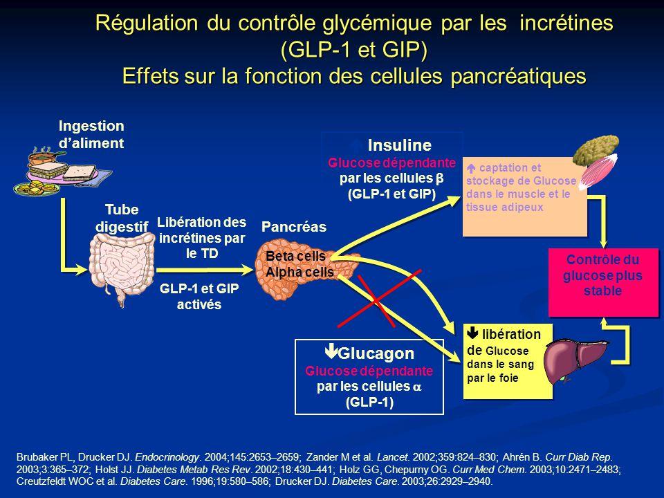 Régulation du contrôle glycémique par les incrétines (GLP-1 et GIP) Effets sur la fonction des cellules pancréatiques