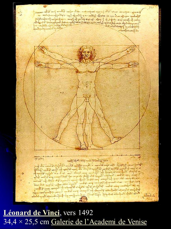 Léonard de Vinci, vers 1492 34,4 × 25,5 cm Galerie de l'Academi de Venise