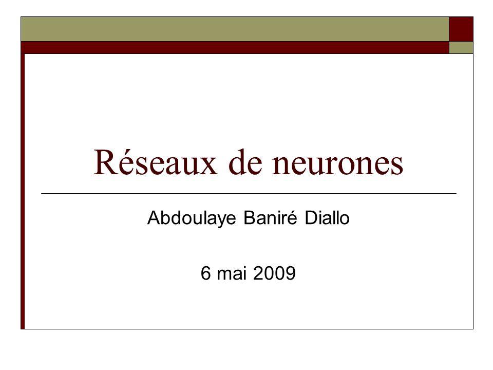 Abdoulaye Baniré Diallo 6 mai 2009