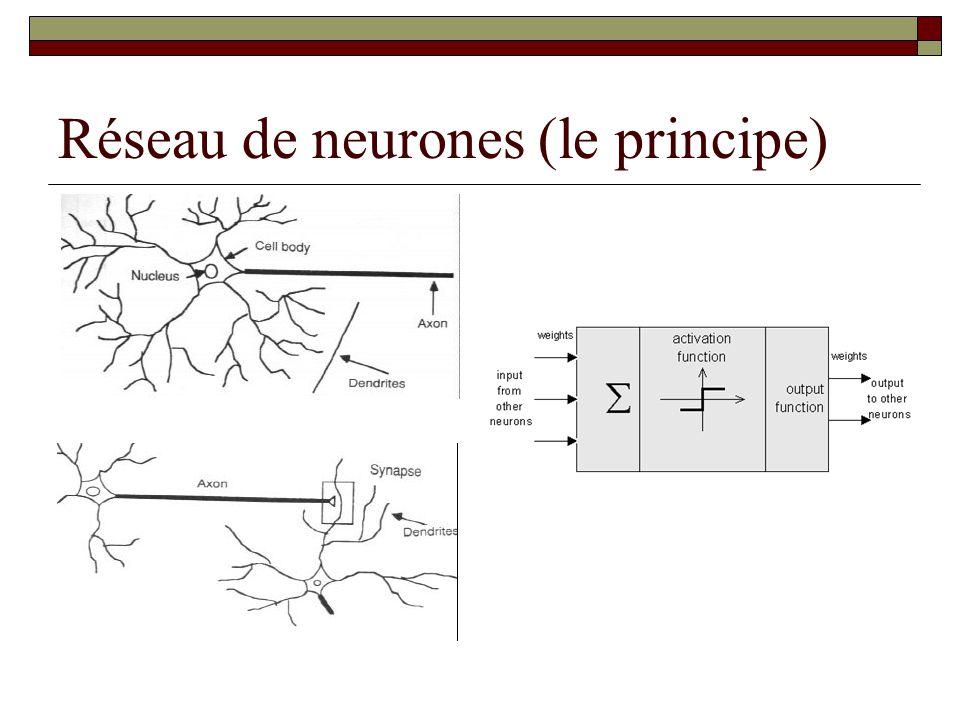 Réseau de neurones (le principe)