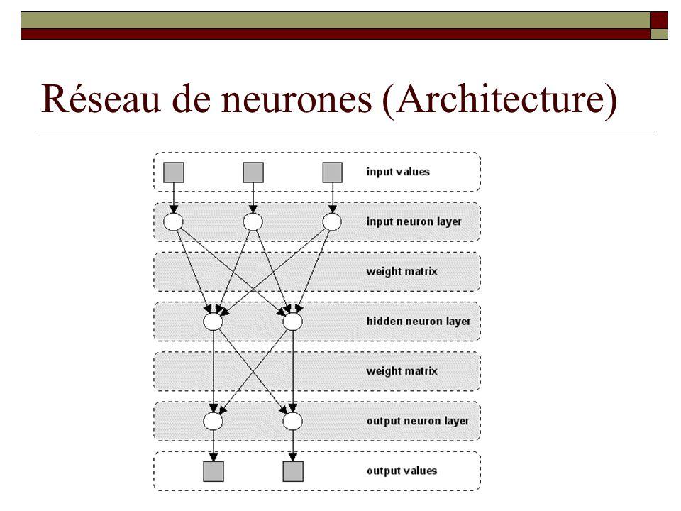 Réseau de neurones (Architecture)