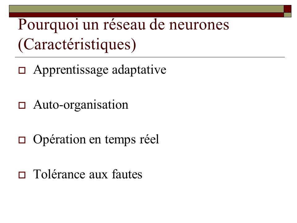 Pourquoi un réseau de neurones (Caractéristiques)