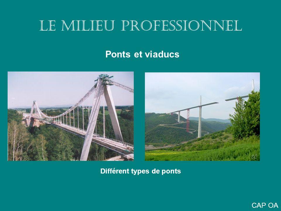 LE MILIEU PROFESSIONNEL