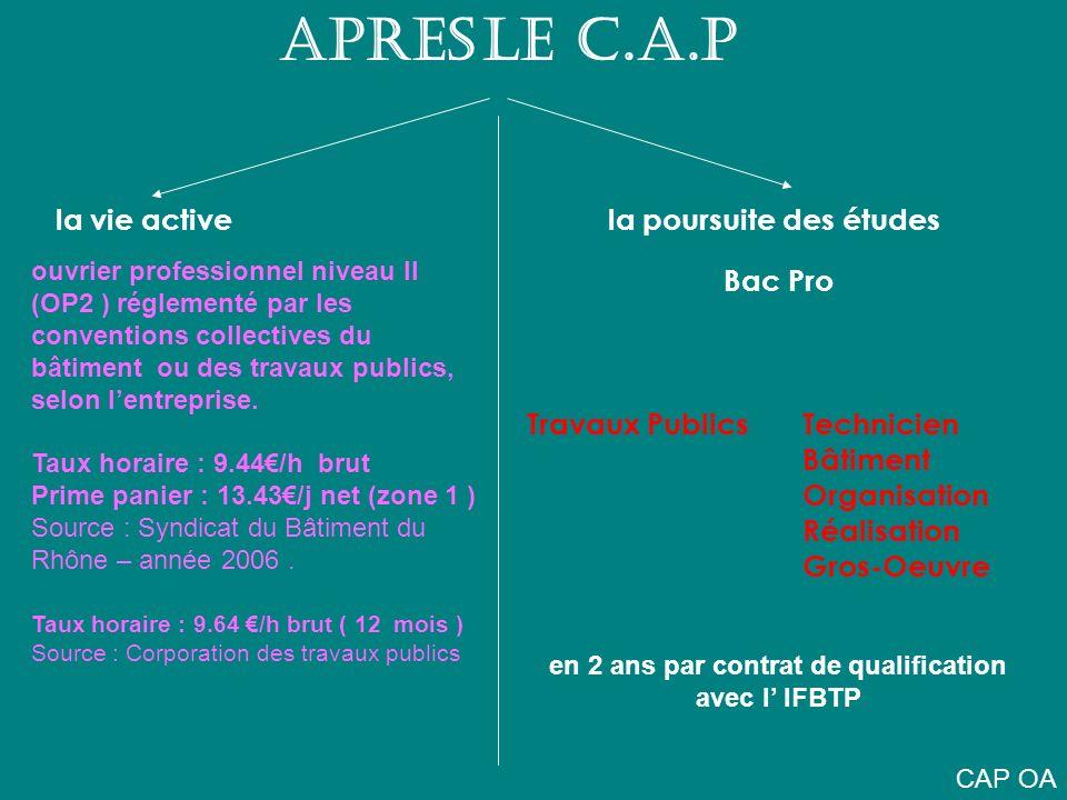 APRES LE C.A.P la vie active la poursuite des études Bac Pro