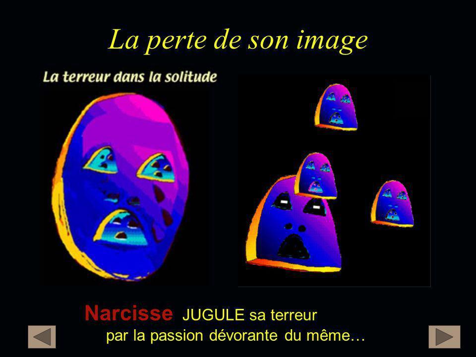La perte de son image Narcisse JUGULE sa terreur