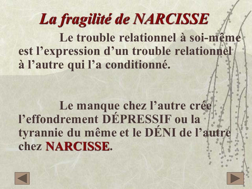 La fragilité de NARCISSE