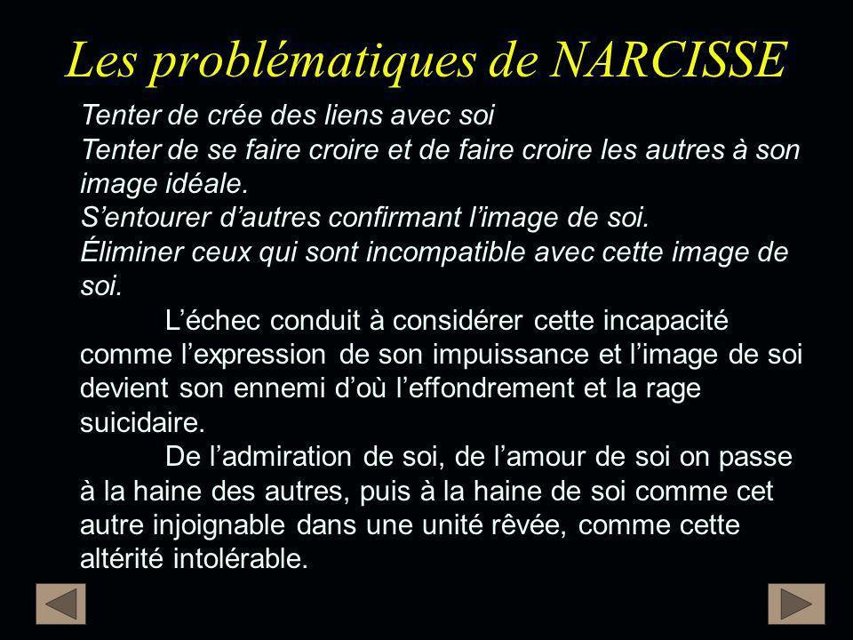 Les problématiques de NARCISSE