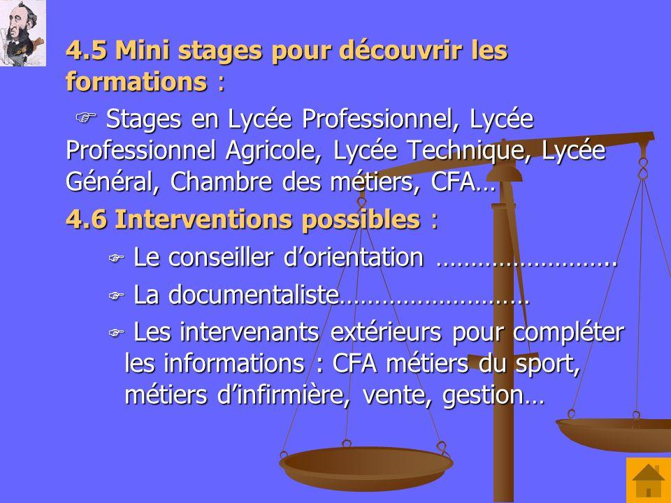 4.5 Mini stages pour découvrir les formations :