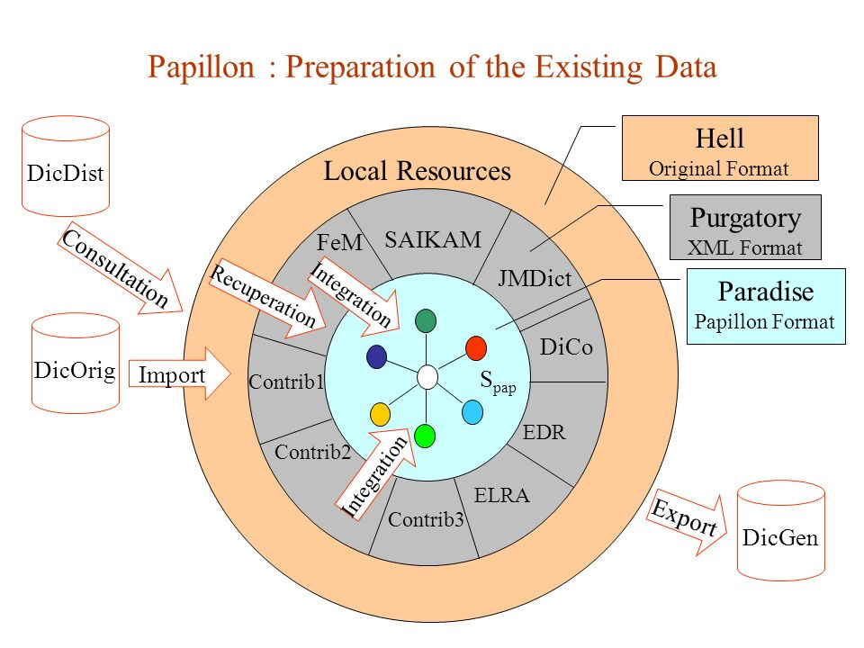 Papillon : Preparation of the Existing Data