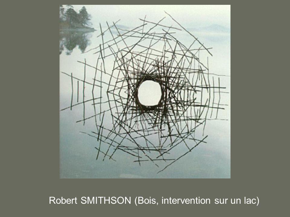 Robert SMITHSON (Bois, intervention sur un lac)