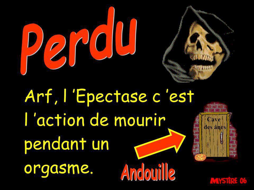 Perdu Arf, l 'Epectase c 'est l 'action de mourir pendant un orgasme.