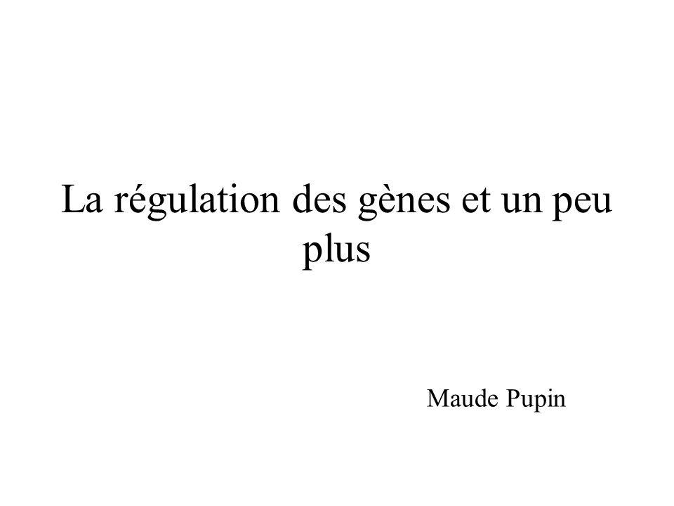 La régulation des gènes et un peu plus
