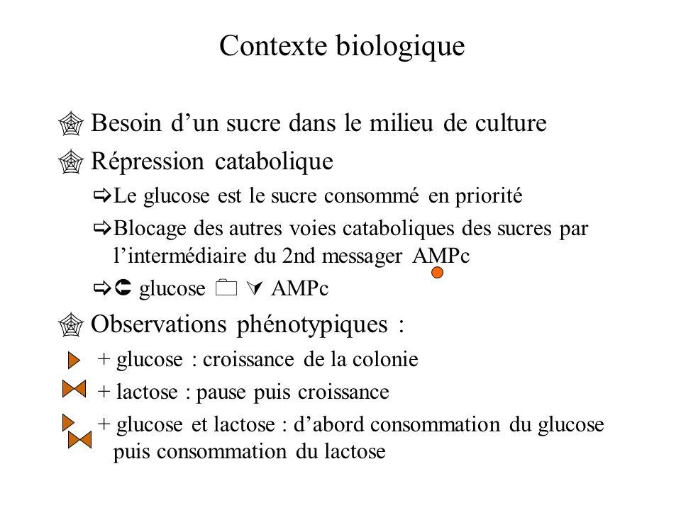 Contexte biologique Besoin d'un sucre dans le milieu de culture