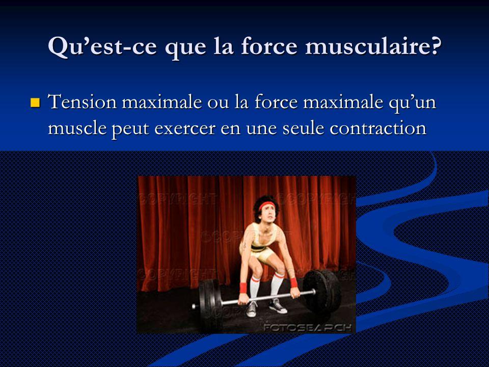 Qu'est-ce que la force musculaire