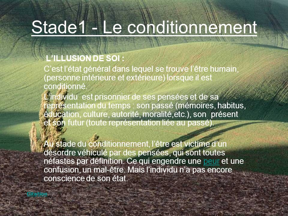 Stade1 - Le conditionnement