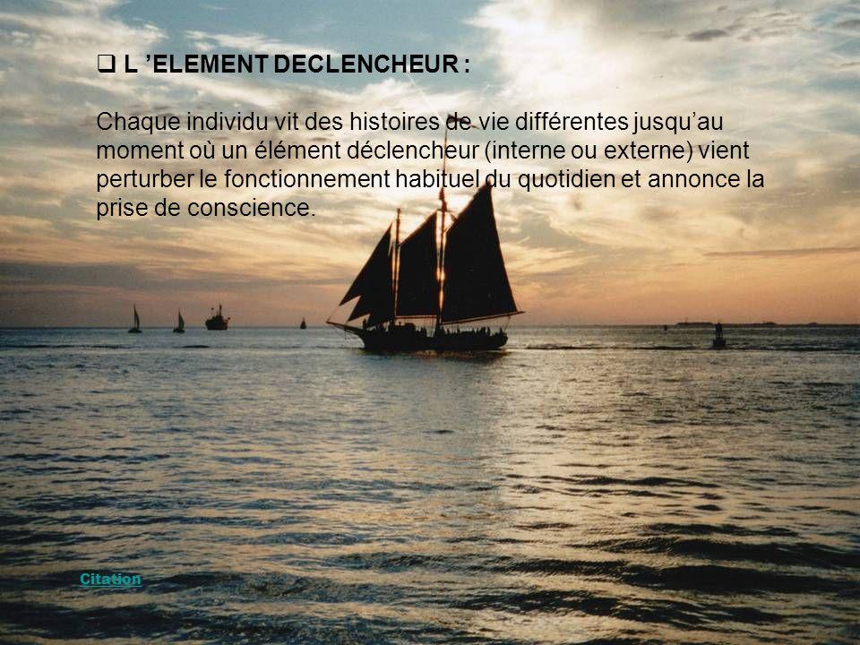 L 'ELEMENT DECLENCHEUR :