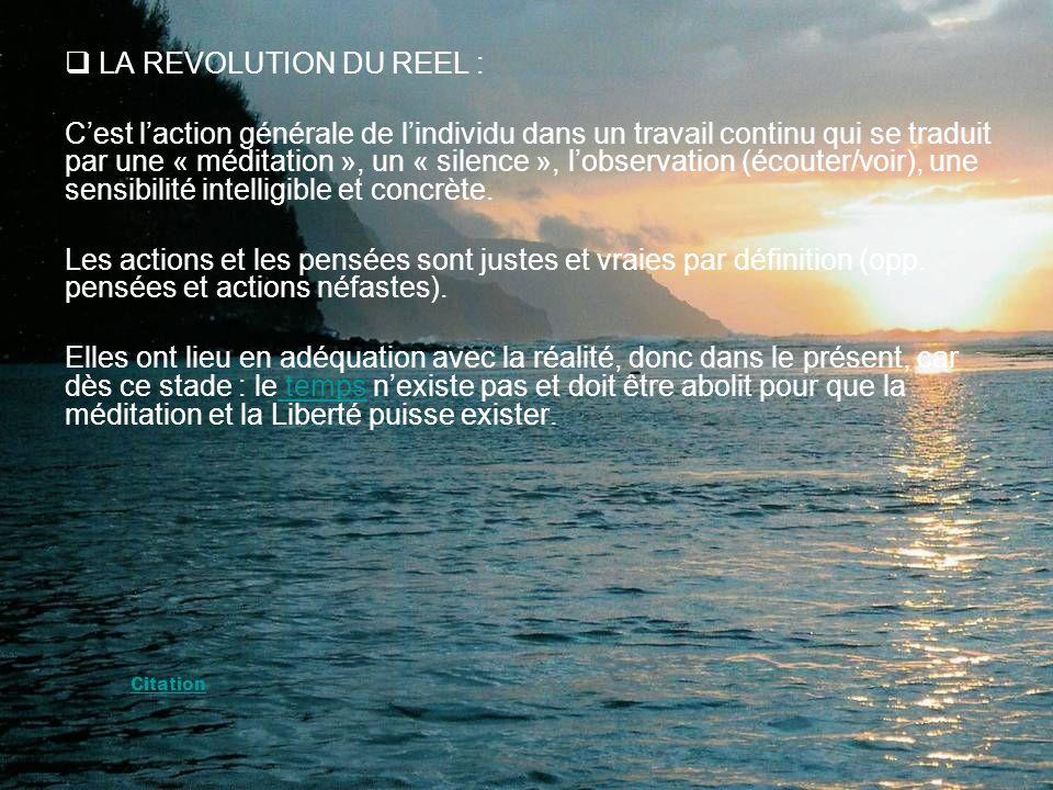 LA REVOLUTION DU REEL :
