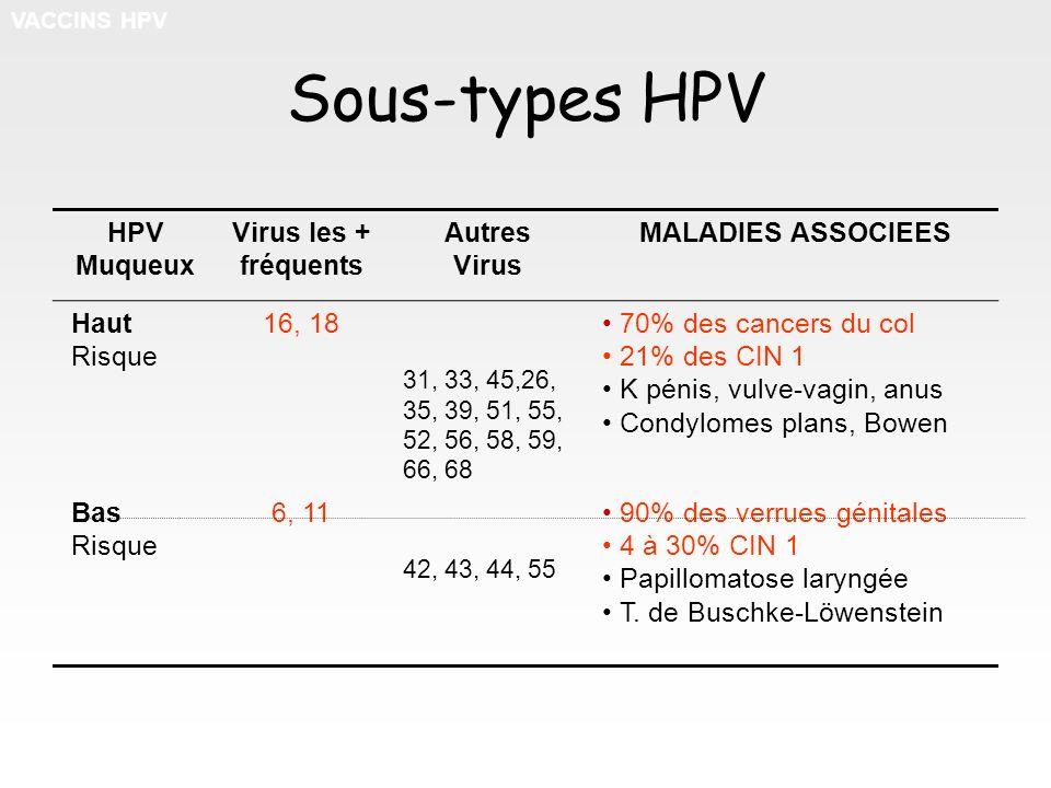 Sous-types HPV HPV Muqueux Virus les + fréquents Autres Virus