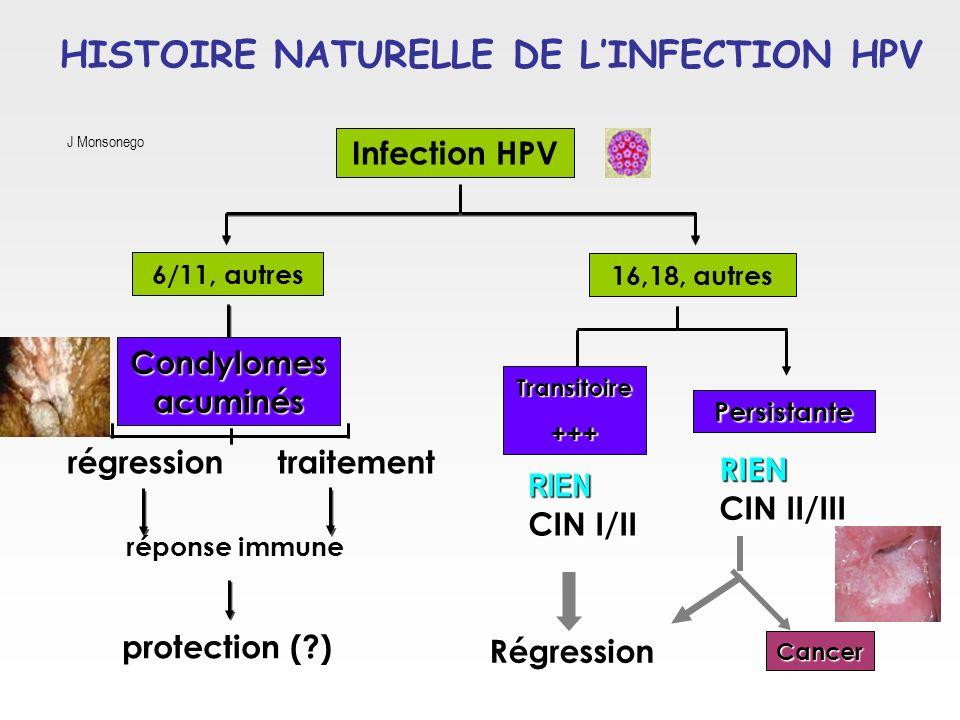 HISTOIRE NATURELLE DE L'INFECTION HPV