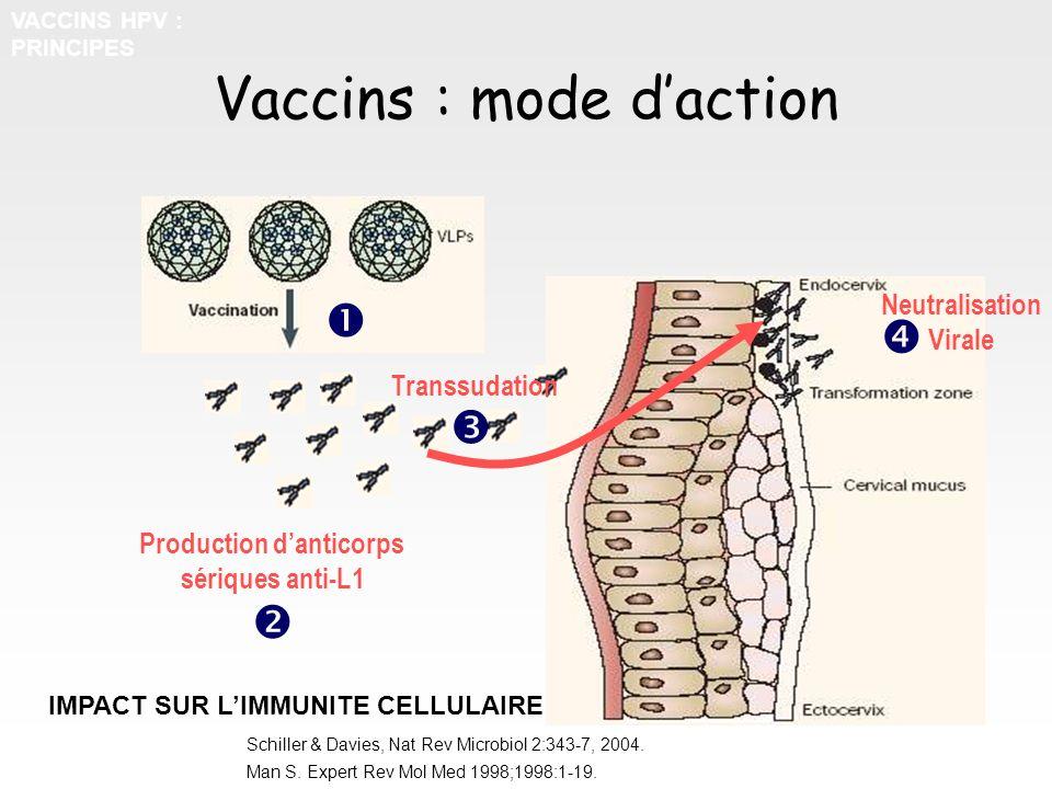 Vaccins : mode d'action