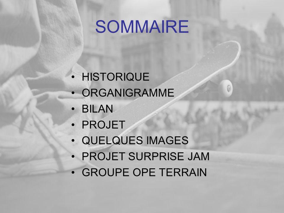 SOMMAIRE HISTORIQUE ORGANIGRAMME BILAN PROJET QUELQUES IMAGES
