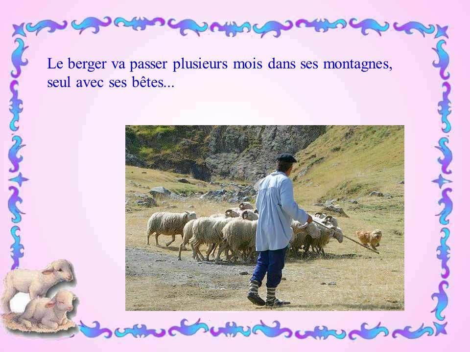 Le berger va passer plusieurs mois dans ses montagnes,
