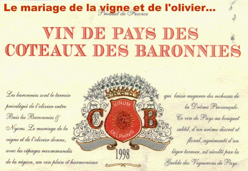 Le mariage de la vigne et de l olivier…