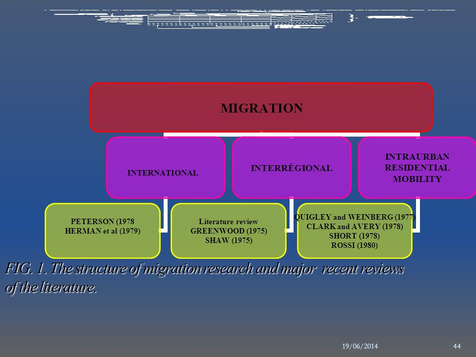 FIG. 1. The structure of migration research and major recent reviews of the literature.