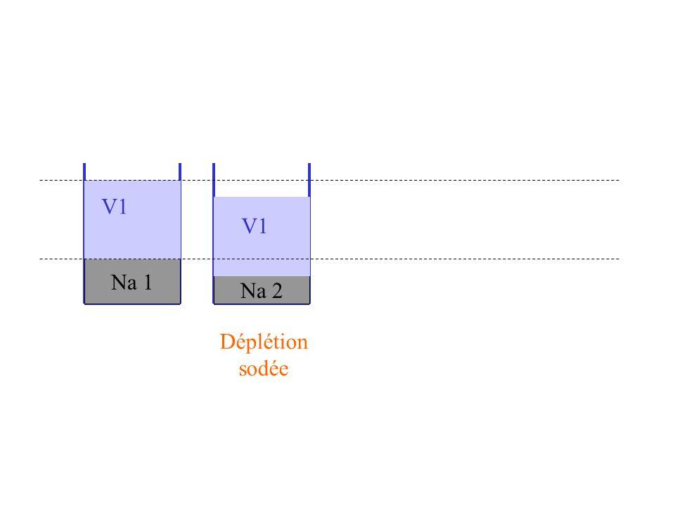 V1 V1 Na 1 Na 2 Déplétion sodée