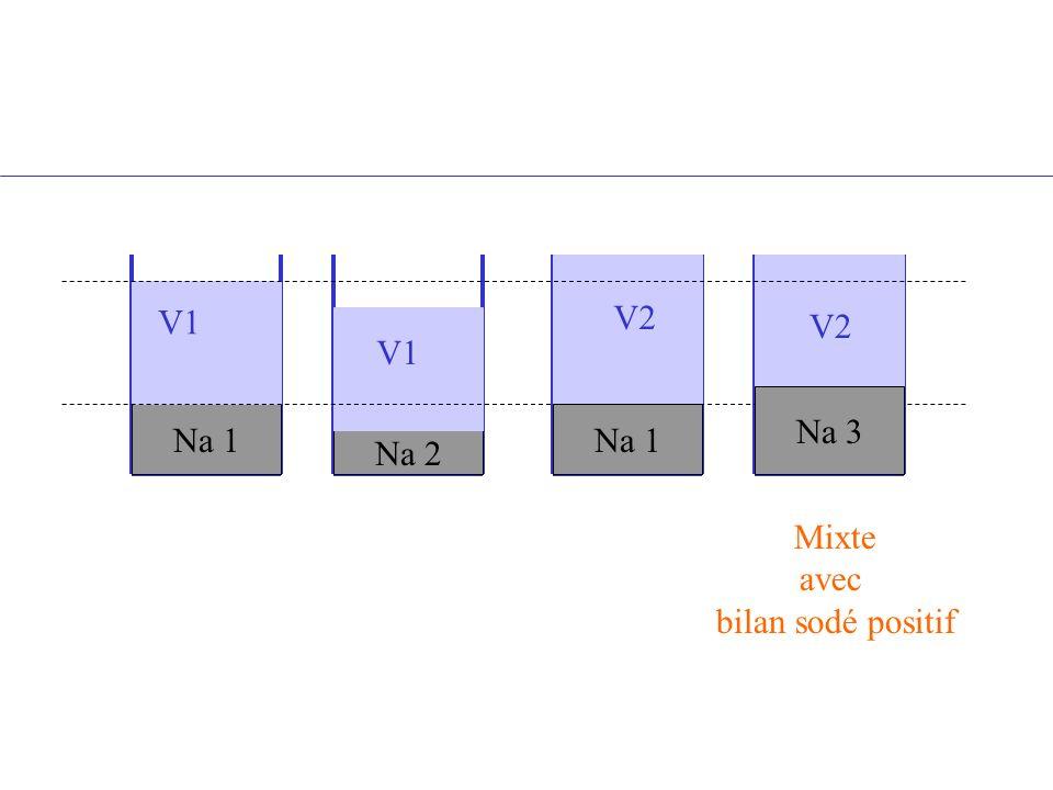 V1 V2 V2 V1 Na 3 Na 1 Na 1 Na 2 Mixte avec bilan sodé positif