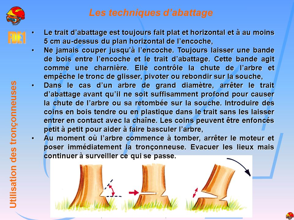r le de l quipier feux de for ts utilisation des tron onneuses ppt video online t l charger. Black Bedroom Furniture Sets. Home Design Ideas