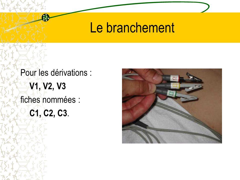 Le branchement Pour les dérivations : V1, V2, V3 fiches nommées :