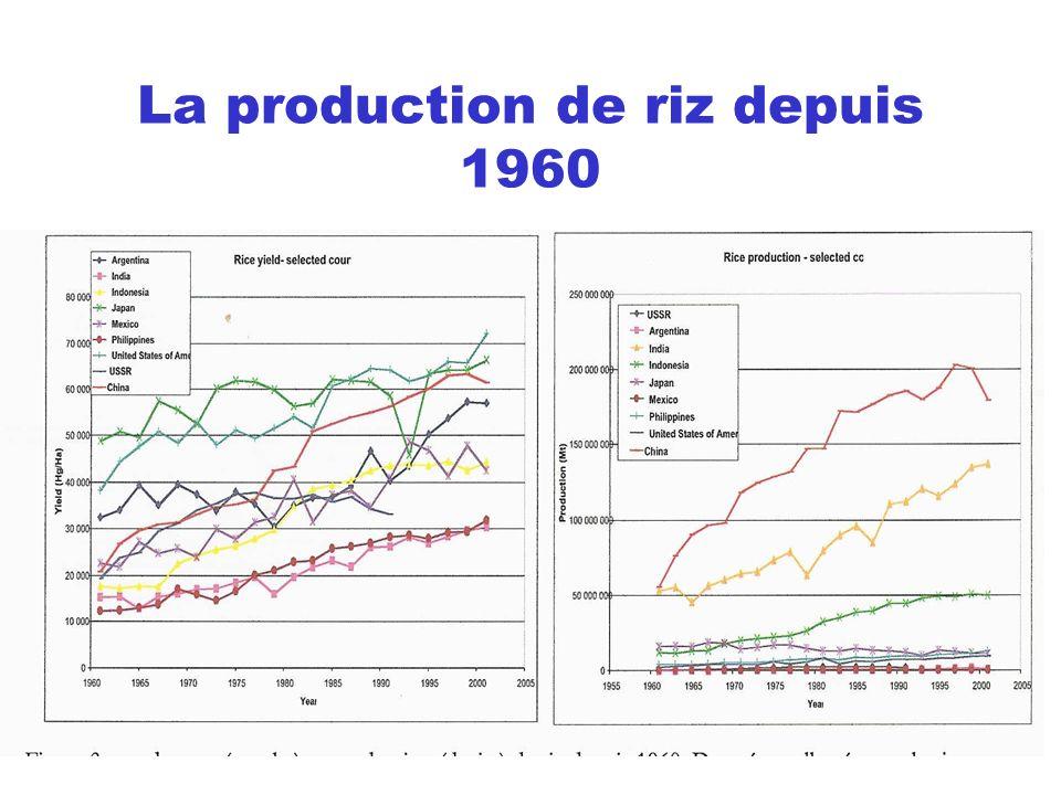 La production de riz depuis 1960