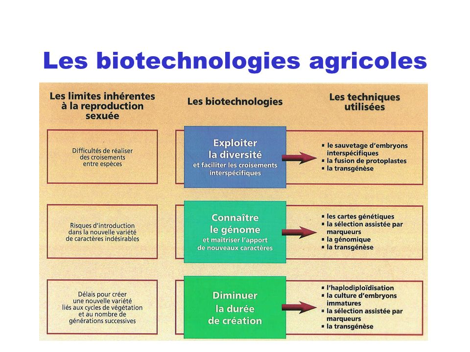 Les biotechnologies agricoles