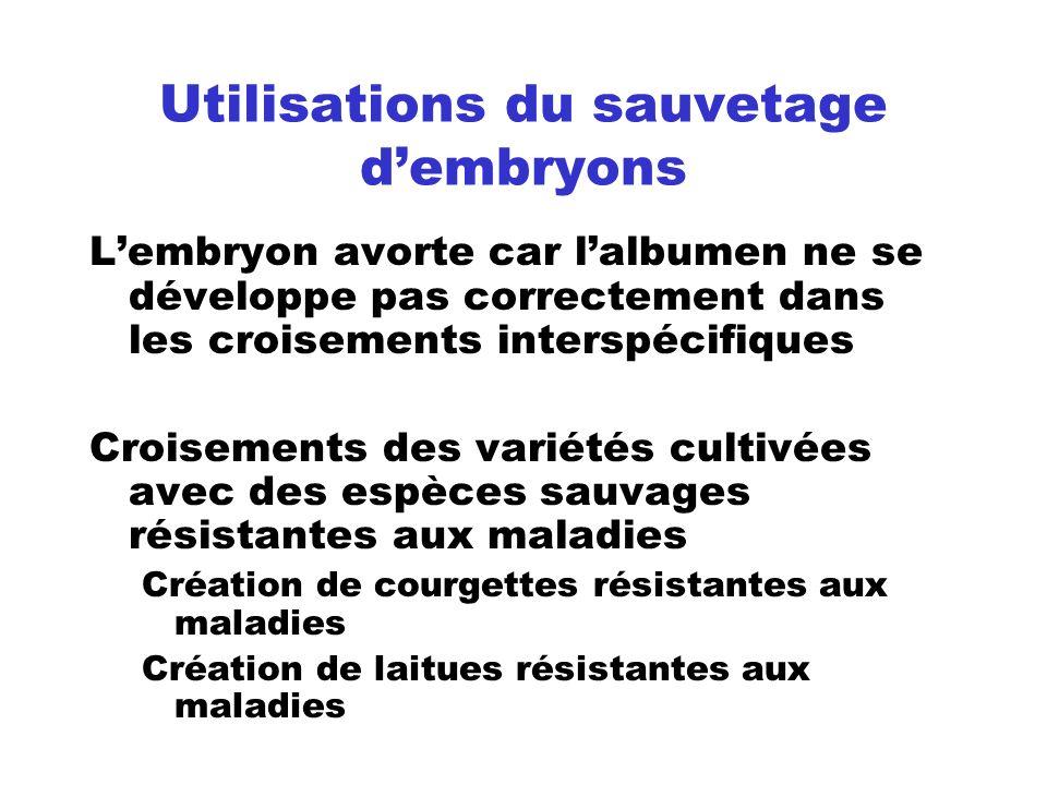 Utilisations du sauvetage d'embryons