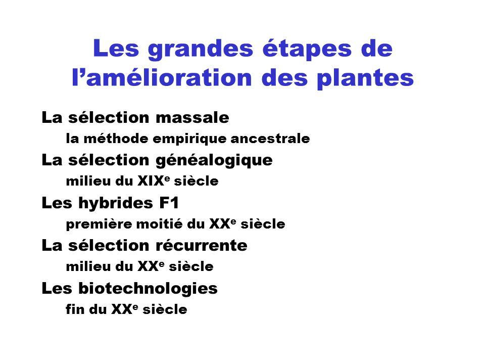 Les grandes étapes de l'amélioration des plantes
