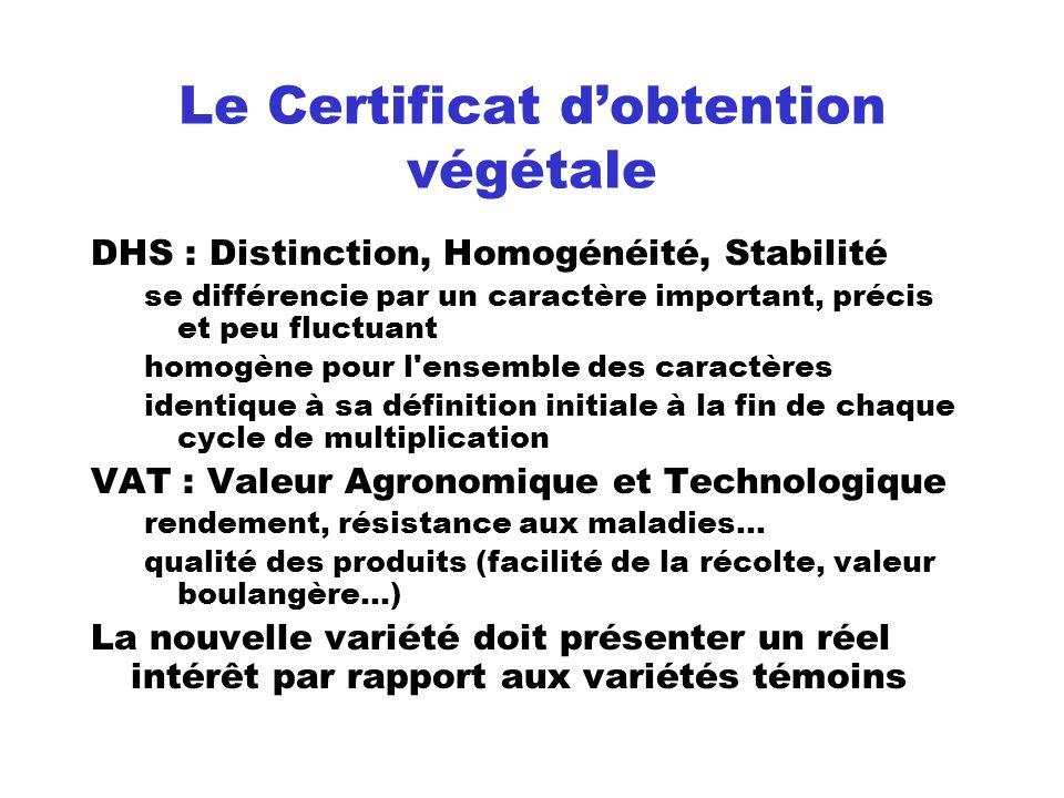 Le Certificat d'obtention végétale