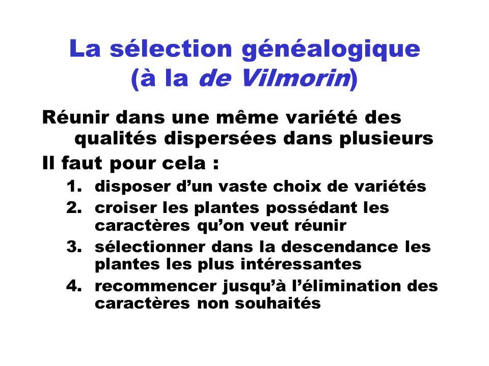 La sélection généalogique (à la de Vilmorin)