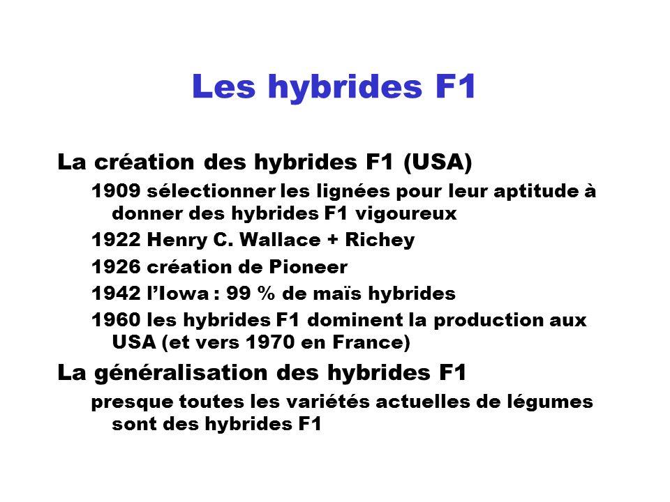 Les hybrides F1 La création des hybrides F1 (USA)