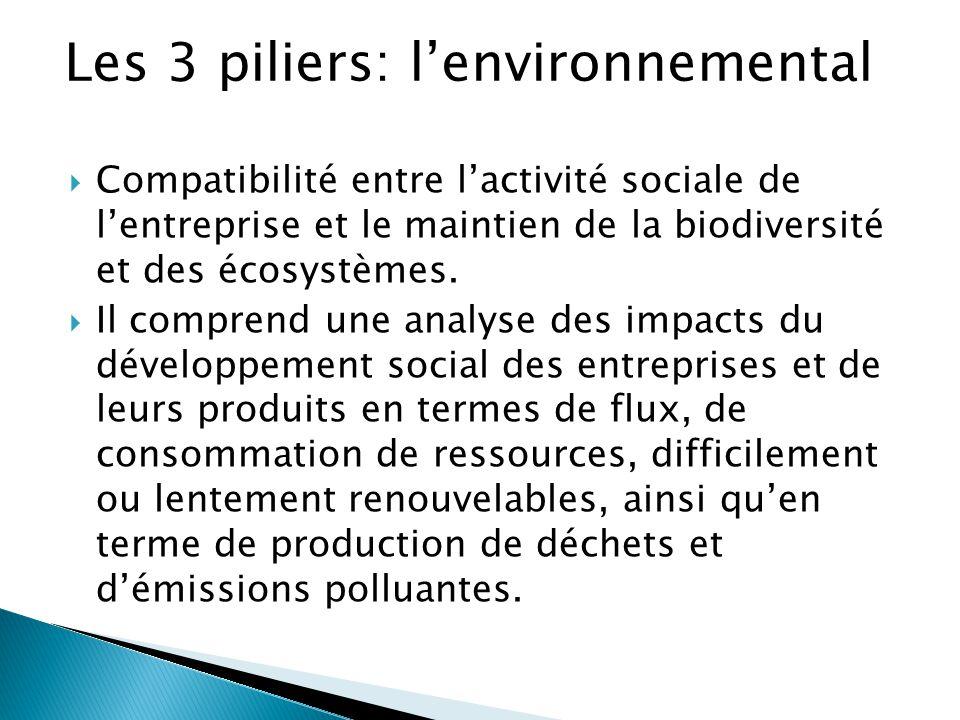 Les 3 piliers: l'environnemental