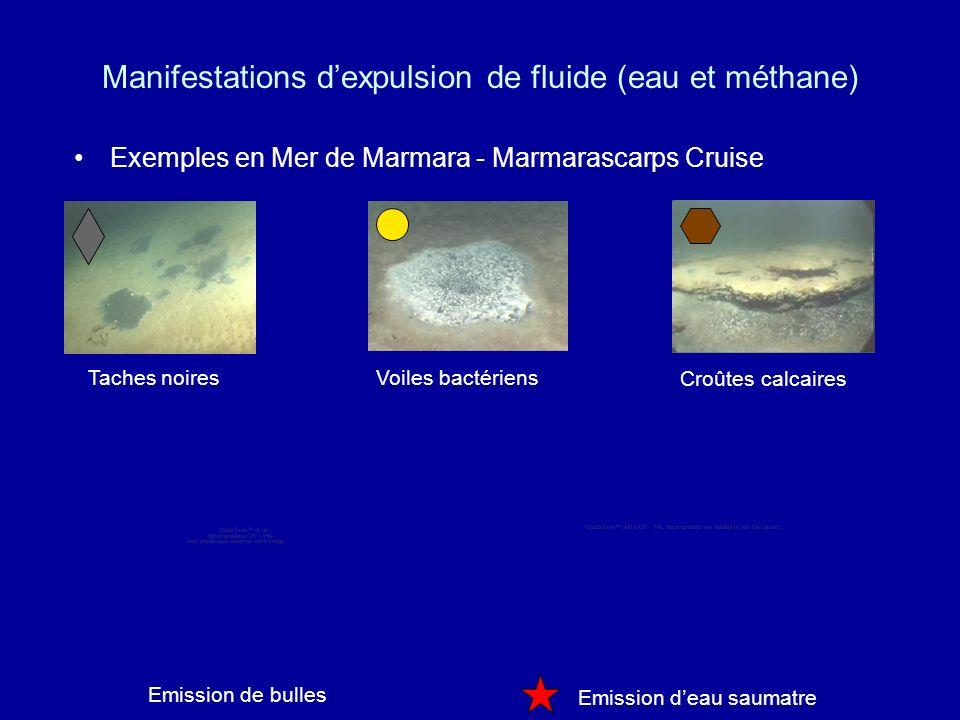 Manifestations d'expulsion de fluide (eau et méthane)