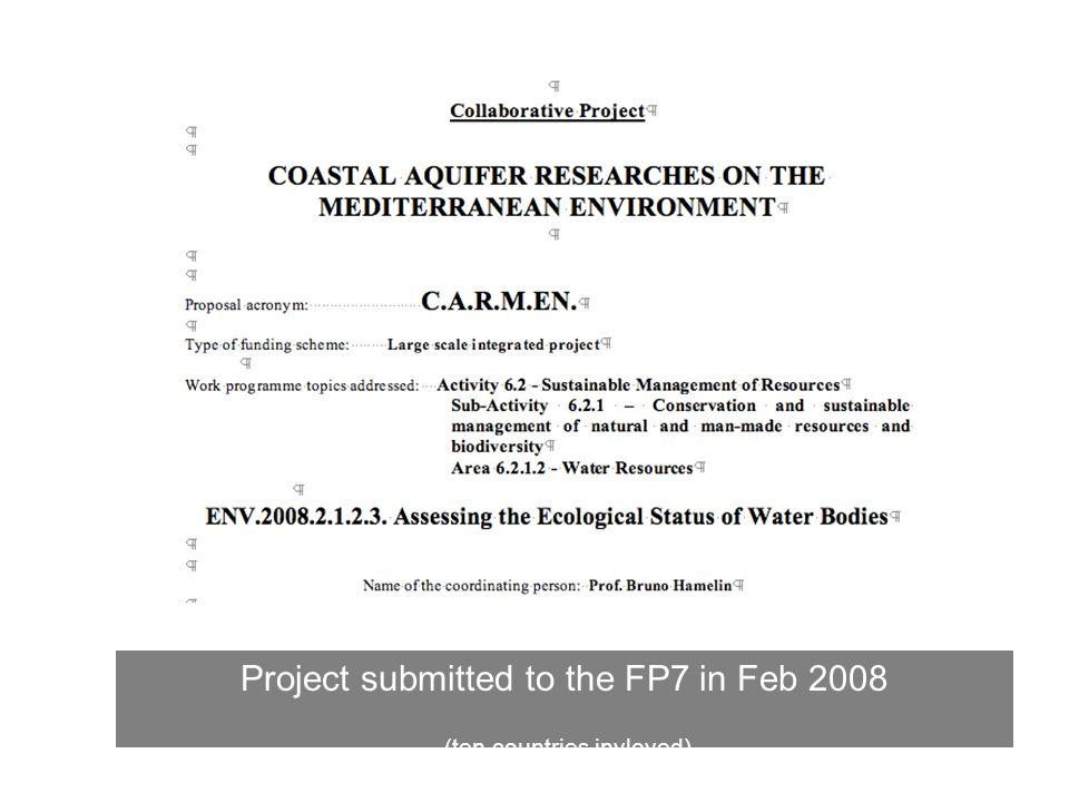 Project submitted to the FP7 in Feb 2008